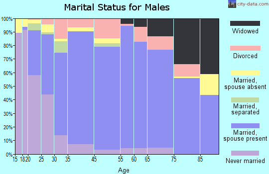 Unicoi County marital status for males