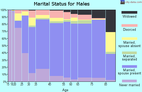 Gillespie County marital status for males