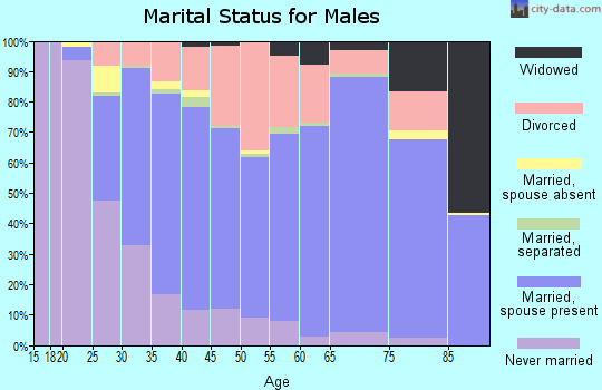 Lanier County marital status for males