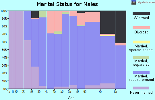 Laurens County marital status for males