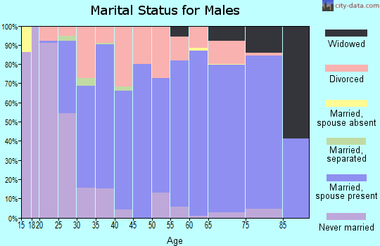 Ripley County marital status for males