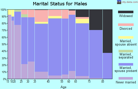 Webster County marital status for males