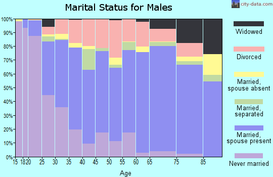 Saline County marital status for males