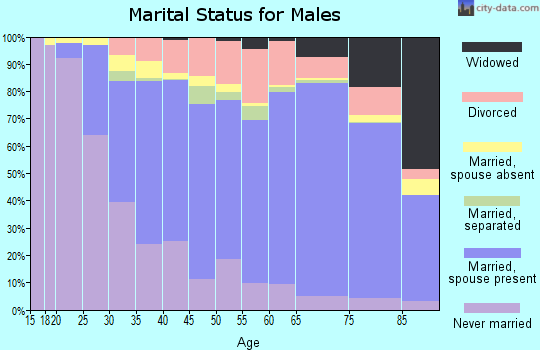 Wright County marital status for males
