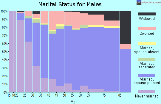 Wythe County marital status for males