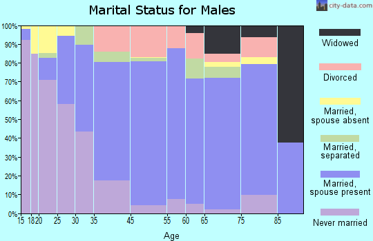 Meriwether County marital status for males