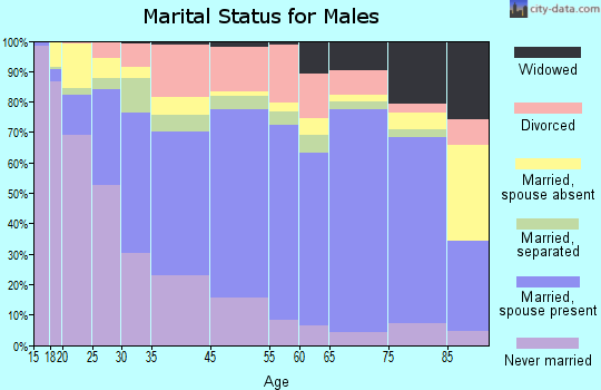 Shannon County marital status for males