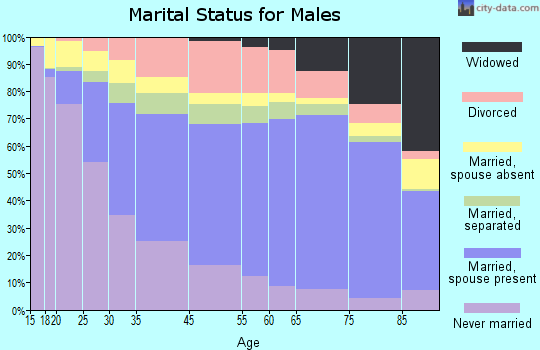 Hays County marital status for males