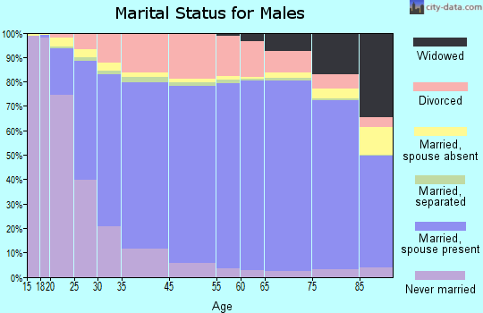 Hockley County marital status for males