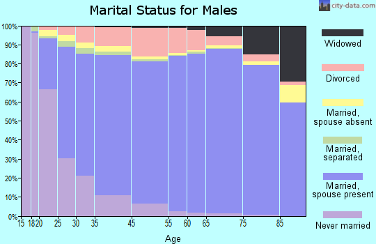 Hopkins County marital status for males