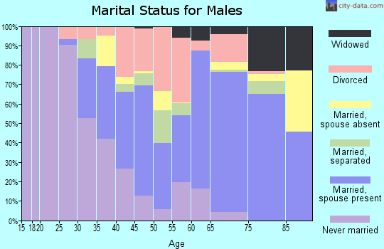Rockdale County marital status for males
