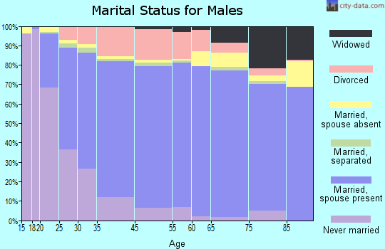 Kaufman County marital status for males
