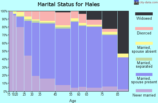 Kendall County marital status for males