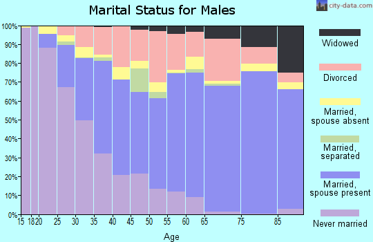 Barrow County marital status for males