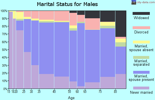 Lee County marital status for males