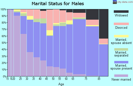 Yukon-Koyukuk Census Area marital status for males