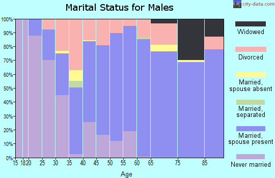 Pleasants County marital status for males