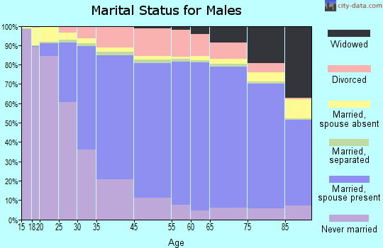 Brown County marital status for males