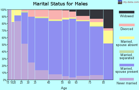 Morris County marital status for males