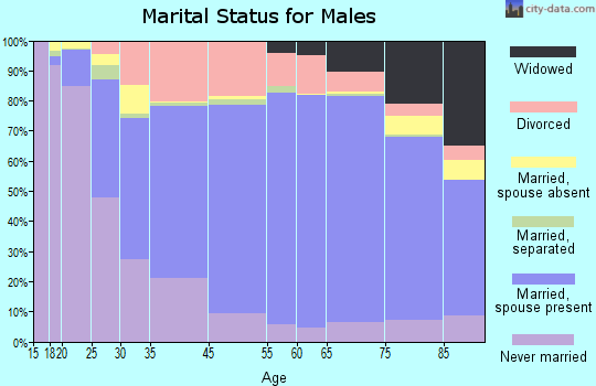 Palo Pinto County marital status for males