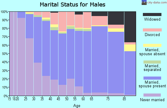 Reeves County marital status for males