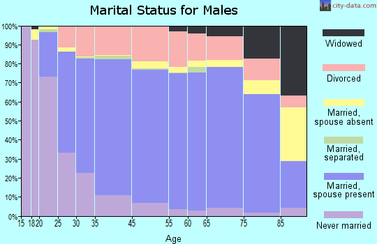 Somervell County marital status for males