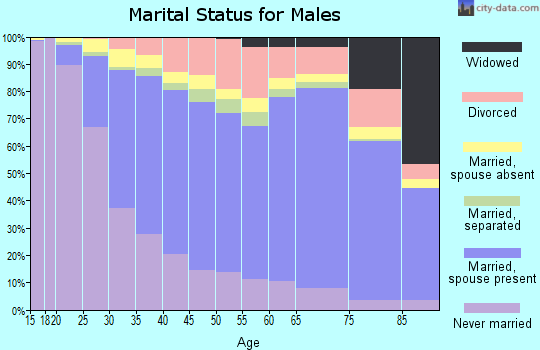 Swisher County marital status for males