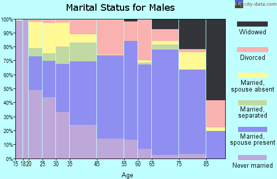 Essex County marital status for males