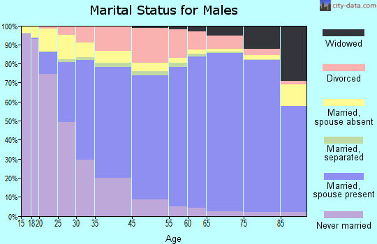 Burke County marital status for males