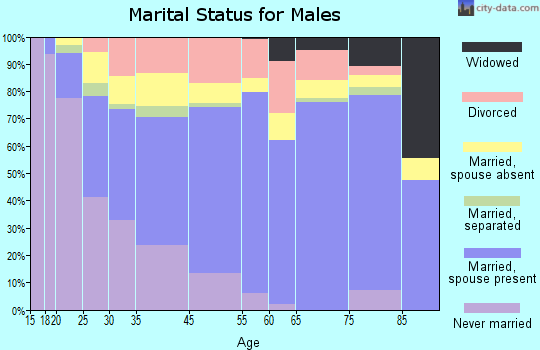 Chaffee County marital status for males