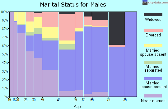Windham County marital status for males