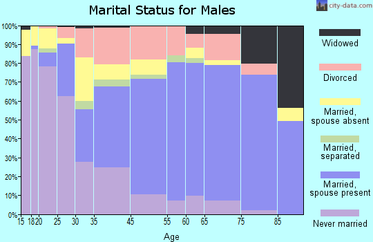 Boone County marital status for males