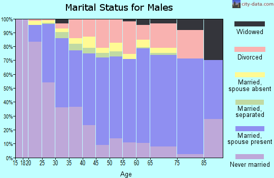 Fairbanks North Star Borough marital status for males