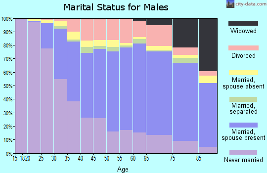Chemung County marital status for males