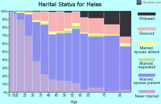 Yellowstone County marital status for males