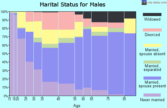 Bailey County marital status for males
