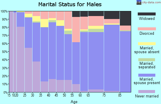 Nantucket County marital status for males