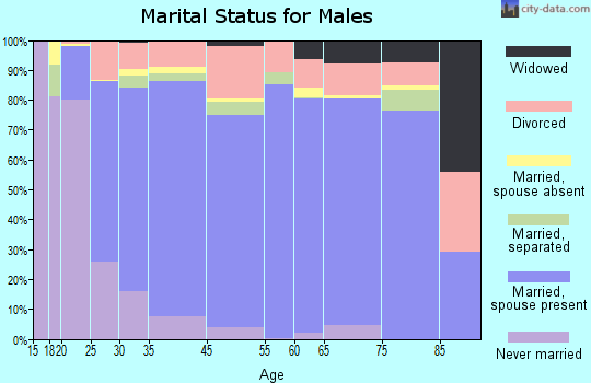 Benzie County marital status for males