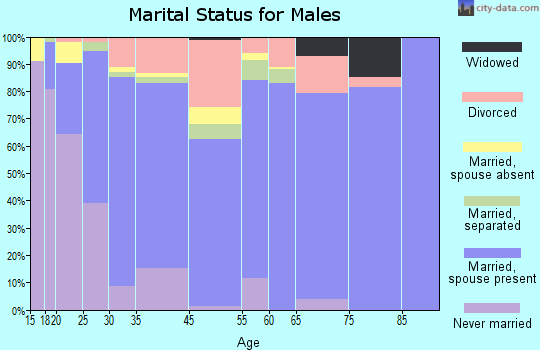 Hunterdon County marital status for males