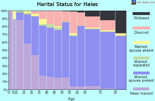 Brunswick County marital status for males