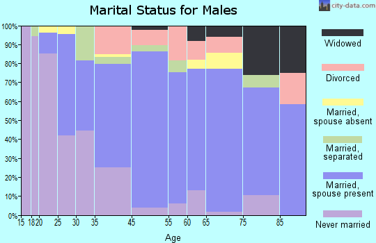 Norfolk County marital status for males