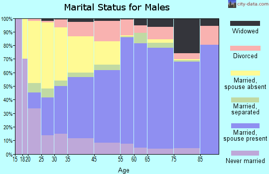 Cambria County marital status for males