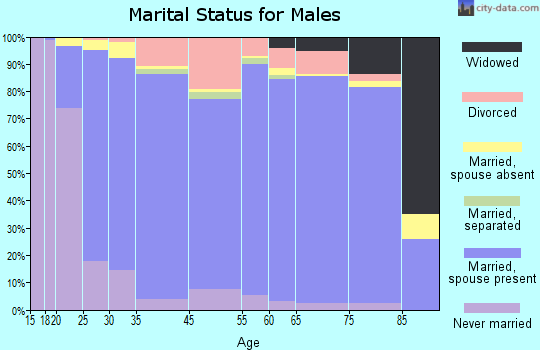 Iron County marital status for males