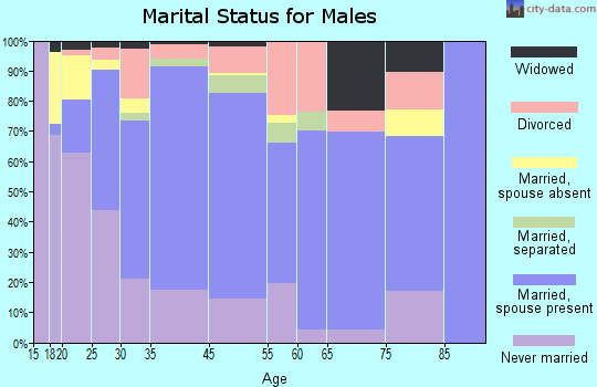 Rutland County marital status for males