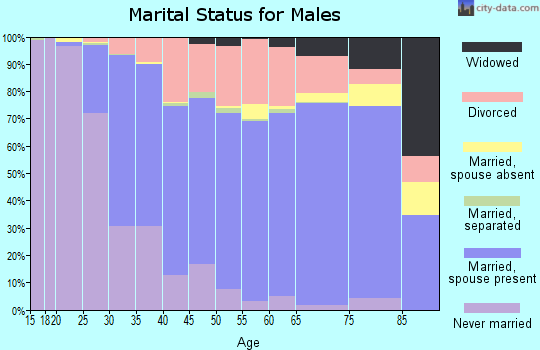 New Castle County marital status for males