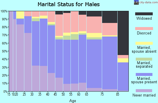 Cameron County marital status for males