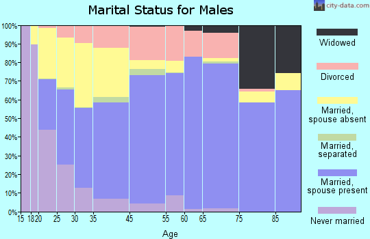 Juab County marital status for males