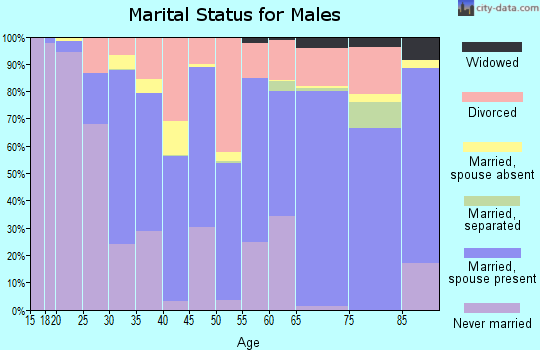 Valdez-Cordova Census Area marital status for males