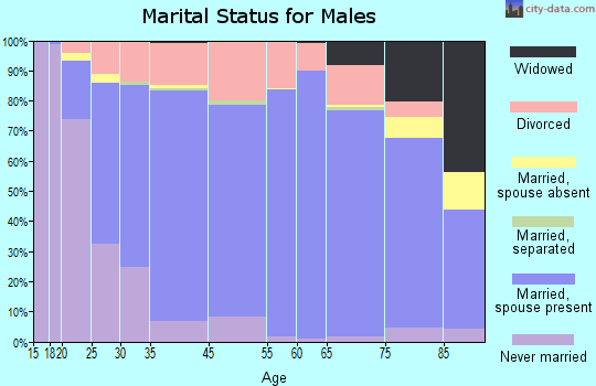 Bee County marital status for males