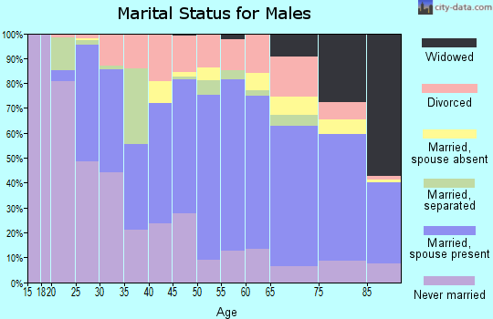 Custer County marital status for males
